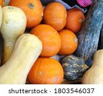 Some Different Type Of Pumpkin  ...