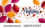 autumn background decorate with ... | Shutterstock .eps vector #1803919357