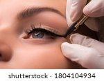 Permanent Eye Makeup Close Up...