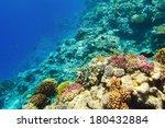 underwater image of coral reef | Shutterstock . vector #180432884