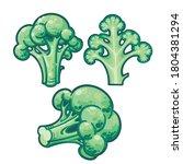 green broccoli botanical hand...   Shutterstock .eps vector #1804381294