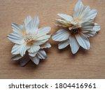 Handmade Fabric Flowers On...
