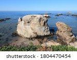 California Landscape  Usa  ...