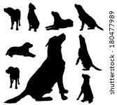 vector silhouette of a dog on... | Shutterstock .eps vector #180477989