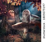 Sleeping Owl Sitting On...