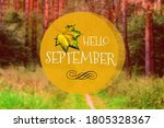 Hello September Phrase   Yello...