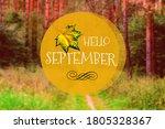 Hello September Phrase   Yello...