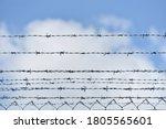 Barbed Wire Fences Around...