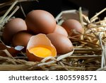 Fresh Farm Eggs On Hays In Dar...