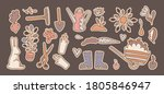 a set of various items for... | Shutterstock .eps vector #1805846947