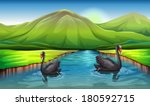 aqua,acuáticos,aves,aves,pichones,diario,todos los días,flujo,para,vegetación,imagen,accidente geográfico,más grande,recursos,ribera