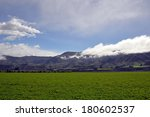summer pasture   Shutterstock . vector #180602537