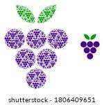 Vector Grape Berry Composition...