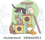 many cats are playing on the... | Shutterstock .eps vector #1806465811