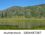 The peaceful Freeman Reservoir  below the mountainside of the Routt National Forests. In the Rocky mountains of Colorado - stock photo
