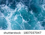 A Tiny Fragment Of The Sea That ...