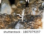 Internal Images Of Caves  With...