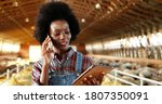 Small photo of Young African American pretty woman using tablet device and talking on mobile phone in farm stable. Female farmer tapping and scrolling on gadget computer in shed. Girl speaking on cellphone