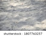 Sand With Tiny Debris Close Up...