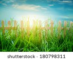 garden grass and wooden fence... | Shutterstock . vector #180798311