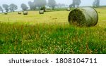 Countryside   Round Hay Bales...