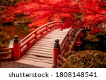 Small photo of Red autumn park bridge. Wooden bridge in autumn park. Red autumn scene