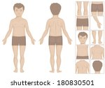 human or boy body parts  vector ... | Shutterstock .eps vector #180830501