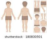 human or boy body parts  vector ...   Shutterstock .eps vector #180830501