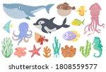 cartoon ocean animals. funny... | Shutterstock . vector #1808559577