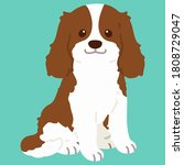 flat colored brown cavalier... | Shutterstock .eps vector #1808729047