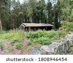 Log Cabin  With Wild Plants ...