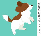flat colored brown cavalier... | Shutterstock .eps vector #1809188257