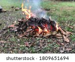 Burning Fire Of Dried Leaves....