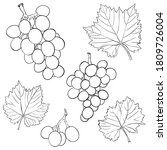 grapes and leaves. a set of... | Shutterstock .eps vector #1809726004