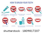 scheme of how to brush your...   Shutterstock .eps vector #1809817207