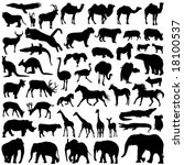 animal silhouettes   Shutterstock .eps vector #18100537