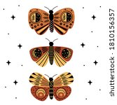 poster with mystic moths and... | Shutterstock .eps vector #1810156357