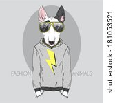 agressive,animal,anthropomorphic,art,body,boy,bullterrier,card,cartoon,casual,character,city,clothes,cool,cute