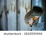 Drainpipe On A Iron Wall Of A...