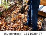Man Cleaning Fallen Autumn...