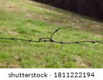 photos of barbed wire with... | Shutterstock . vector #1811222194