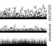 vector wild herbs and flowers... | Shutterstock .eps vector #181137335
