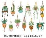 plant in hanging pots.... | Shutterstock .eps vector #1811516797