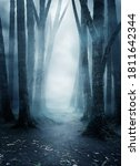a quite and mysterious forest... | Shutterstock . vector #1811642344