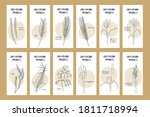 set of flyers with grain crops  ... | Shutterstock .eps vector #1811718994