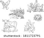 Sketch Drawing Of Animals On A...