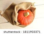 One Ripe Organic Pumpkin In A...