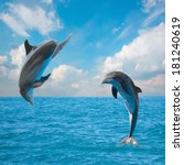 Two  Jumping Dolphins Beautifu...