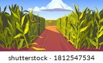 Road On Cornfield With Fork And ...