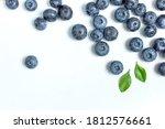 Blueberries Background. Fresh...